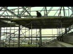 Burnley FC 'The Longside' (1996)