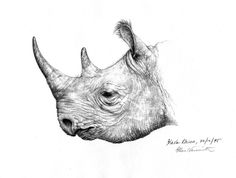 Black Rhino by OiLin.deviantart.com