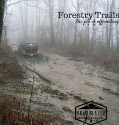 """Forestry Trails 