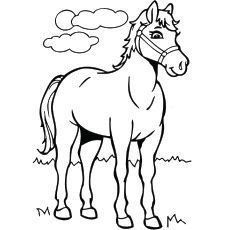 Are you searching horse coloring pages for your kids? Teach your kid about this grand animal using these 48 free printable coloring pages. Color & enjoy now Horse Coloring Pages, Dog Coloring Page, Online Coloring Pages, Cartoon Coloring Pages, Coloring Pages To Print, Colouring Pages, Coloring Pages For Kids, Coloring Books, Free Coloring