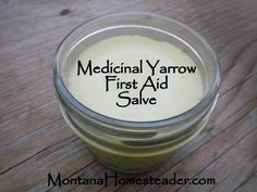 How to make a homemade medicinal yarrow first aid salve Montana Homesteader