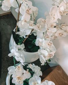 So much detail with these orchids, which are individually laser printed with every last vein to perfectly mimic the real thing.... these beautiful pot plants will always be in full bloom Recycled Timber Furniture, Pot Plants, General Store, Orchids, Recycling, Bloom, Detail, Printed, Beautiful