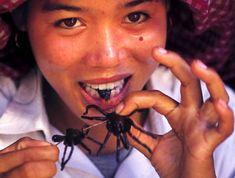 trantulas eaten in Cambodia
