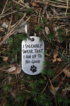 Military Dog Tag - Stainless steel - Customized Pet ID Tag - Pet ID Tags- I solemnly swear that I am up to no good- harry potter hike with dog pictures, hike with dog backpacking, hike with dog photography, hike with dog national parks, hike with dog quotes, hike with dog products, hike with dog tips, hike with dog gears, hike with dog training, hike with dog camping hike with dog trail hike with dog colorado, hike with dog tattoo, hike with dog adventure, hike with dog animal faces