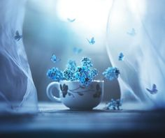 I Use Flowers To Create Magical Images | Bored Panda