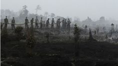Indonesia's highest Islamic authority has said it is a sin for people to deliberately burn forests to clear the land for growing crops.