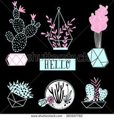 Collection of cactus and succulents on black background. Vector set with succulents flowers, concrete pots and glass terrariums. Vector illustration. - stock vector
