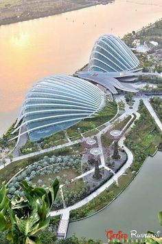 Gardens By The Bay Singapore / Cingapura.
