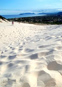 Dunes at Joaquina's Beach, Florianopolis, Santa Catarina, Brazil Copyright: Augusto TRM Oahu Vacation, Vacation Spots, Brasil Travel, Brazil Tourism, Brazil Beaches, Places To Travel, Places To Visit, The Beach, Day Tours