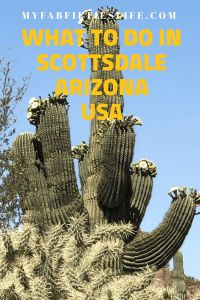 One of the prettiest little towns in the USA, here is what to do in Scottsdale Arizona - My Fab Fifties Life Arizona Usa, Scottsdale Arizona, Comedy House, Desert Botanical Garden, Affordable Vacations, Southwest Usa, Travel Usa, Travel Tips, Travel Destinations
