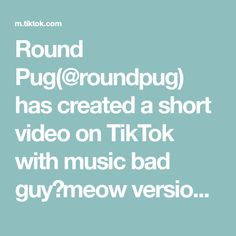 Round pug( has created a short video on TikTok with music bad guy(meow version). Pugs, Back To School, Music, Awesome, Home, Messages, Photos, Musica, Musik