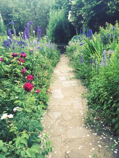 bbbalance:  Part of the garden at Anne Hathaway's cottage in Stratford, England.