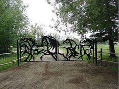 Love this gate