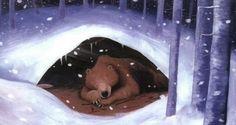 bear winter - Google Search