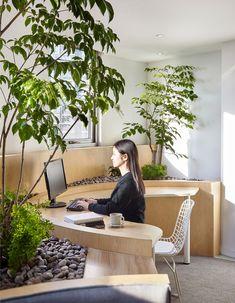 Экоофис в Шанхае с волнообразным расположением рабочих зон: работа Muxin Design | Admagazine | AD Magazine