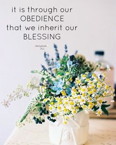 It is through our obedience that we inherit our blessing #Dailydosebyjill