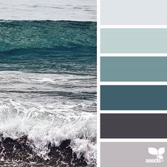 today's inspiration image for { color sea } is by @lbtoma ... thank you, Lina, for another gorgeous #SeedsColor image share!