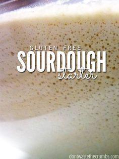 How to Make a Gluten-Free Sourdough Starter