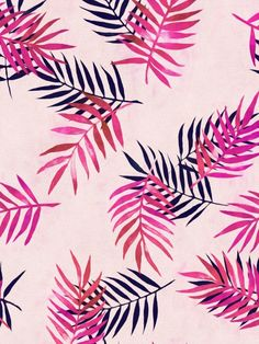 Pink Palm Pattern