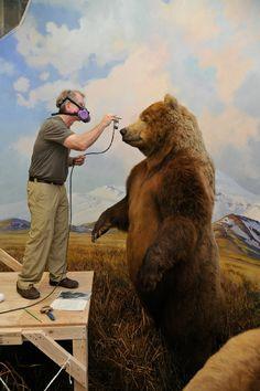 Restoring Dioramas (Credit: © American Museum of Natural History, D. Finnin