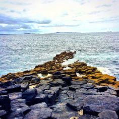 Path to the sea #staffa #treshnish #scotland
