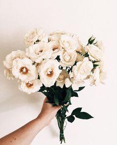 White blooms!