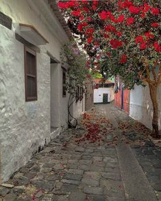 Pueblos Patrimonio de Colombia Beautiful World, Beautiful Places, Abandoned Castles, Glamping, Latina, The Dreamers, Places To Visit, Italy, Landscape