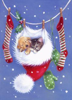 Lisa Alderson - LA - christmas kitten and puppy[1].jpg