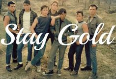 Theme of S.E. Hinton's The Outsiders