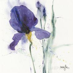 Iris I Prints by Marthe - at AllPosters.com.au