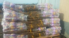 Pacific Groves bare root fruit trees packaged and ready to ship for you to enjoy