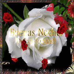 Blessings for the family, friends for the sick and for all our brothers around the world. Good Night Prayer, Good Night Quotes, Good Morning Good Night, Beautiful Gif, Beautiful Roses, Good Night In Spanish, Good Night Flowers, Light Blue Roses, Good Night Friends