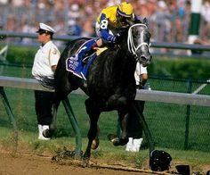 Kentucky Derby Winner Winning Colors