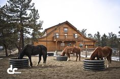 Fairplay, Colorado Horse Barn With Apartment. An all in one building. Beautiful!
