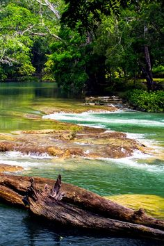 Mahogany Hall is situated on the lovely Mopan River, near the hamlet of Bullet Tree Falls. #Jetsetter
