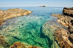 Cavo d'oro Karystos Greece Planet Earth, Places Ive Been, Beaches, Roots, Planets, Summertime, Greece, Have Fun, World