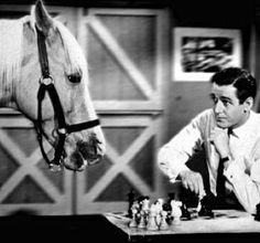 Mr Ed - the talking horse and Wilbur Post