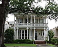 Uptown New Orleans Homes, Large tree