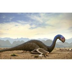 Gigantoraptor a theropod dinosaur from the Cretaceous Period Canvas Art - Mohamad HaghaniStocktrek Images (35 x 23)