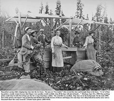Chapter 6- The Changing Face of Agriculture