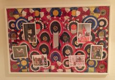 Display of dog show ribbons. Frame it in. A super way to keep the memories dust free.