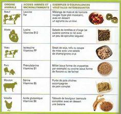 Équivalences végétales protéines