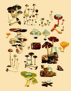 Cats and Spaceshrooms Art Print by Nichole Lillian Ryan - X-Small Botanical Illustration, Illustration Art, Vintage Illustrations, Mushroom Art, Mushroom Crafts, Mushroom House, Popular Art, Canvas Prints, Art Prints