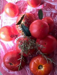 Tomatoes on Pinterest | Fried Green Tomatoes, Tomato Pie and Summer ...