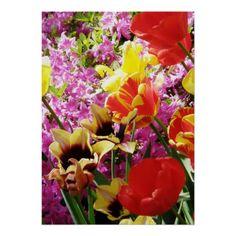 Mix of Flowers Print http://www.zazzle.com/mix_of_flowers_print-228698453792530774?utm_content=buffer33afc&utm_medium=social&utm_source=pinterest.com&utm_campaign=buffer #mixofflowers #floralprint #flowerposter #beautifulflowers