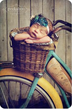 Arms folded in a basket sleeping