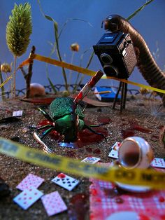 CSII: Crime Scene Insect Investigator, investigating a beetle stabbing. ;-) Insect diorama by Lisa Wood