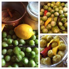 Syltede, grønne Tomater – Kreamors Køkken Villa, Snacks, Fruit, Food, Marmalade, Appetizers, The Fruit, Meals, Villas