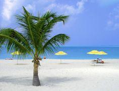 Daily Photo – November 29, 2015 Treasure Cay Beach, Abaco, Bahamas.