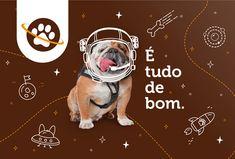Pet Branding, Branding Design, Food Branding, Pet Shop Mundo Animal, Dog Logo Design, Web Design, Work With Animals, Japan Design, Pet Dogs